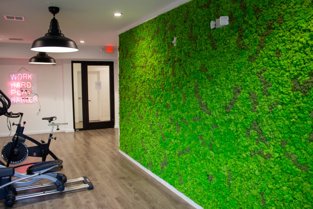 Moss wall in gym