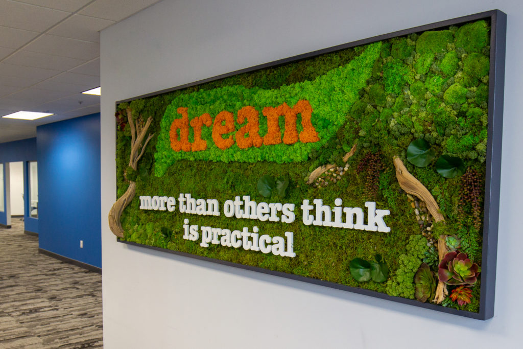 Dream moss wall